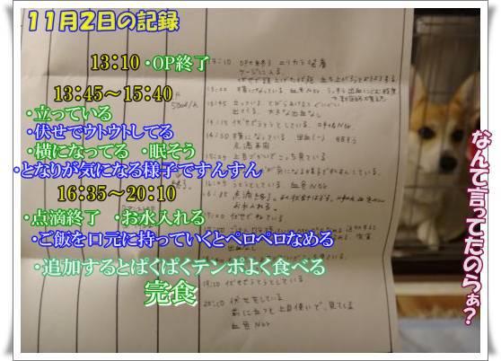 20131102-5.jpg