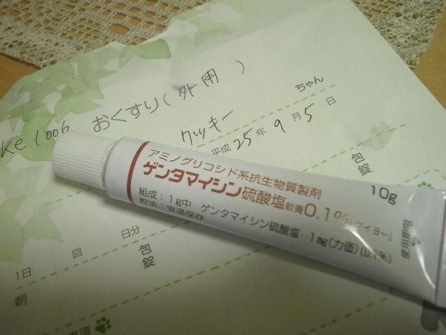 P7100023.jpg
