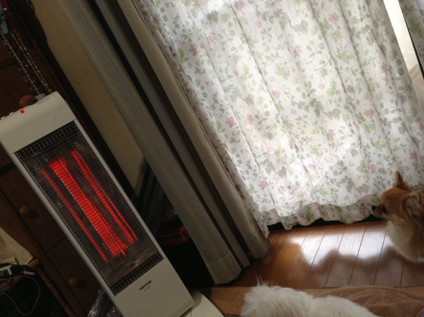 fc2blog_20131031085511bd7.jpg