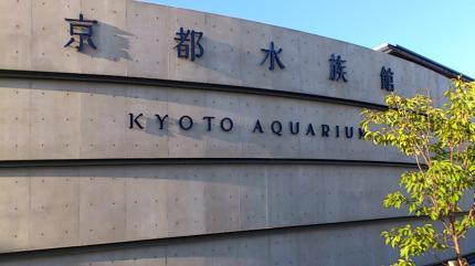 京都水族館_convert_20130915110101