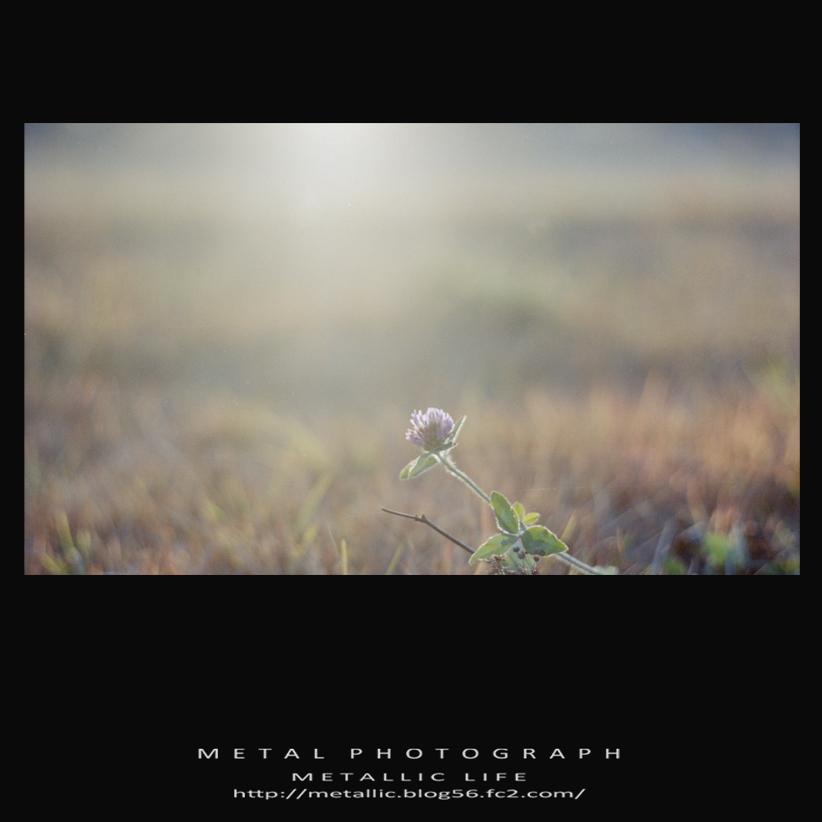 mlsr20131124-37