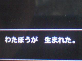 テリワン3D_わたぼう1