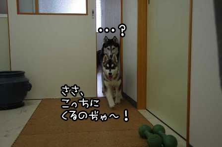 18_20130401193718.jpg