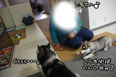 19_20130324220540.jpg