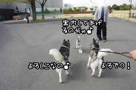 1_20130322220023.jpg
