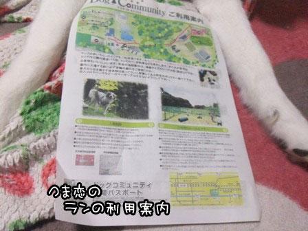 1_20130515213321.jpg