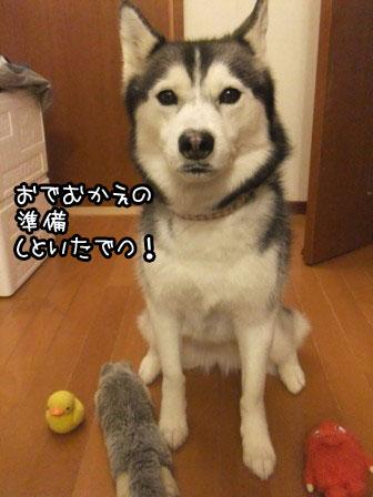 2_20130411221120.jpg