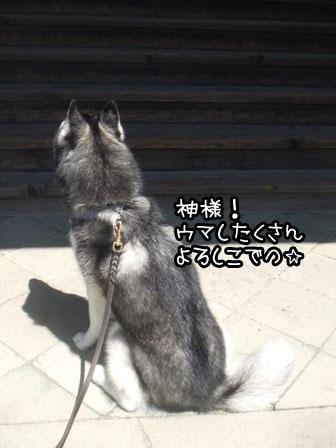 9_20130505225357.jpg