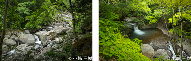 入門大柳川渓谷130527-2
