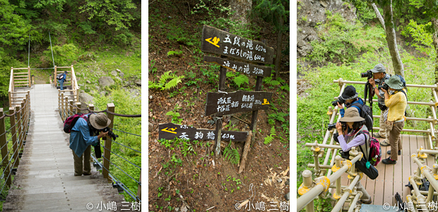 入門大柳川渓谷130527-3