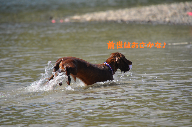 かなやま湖5