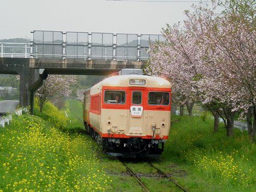 いすみ鉄道・キハ28 2346+キハ52 125(2013年4月6日・城見ヶ丘駅)