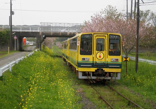 いすみ鉄道・いすみ202+206(2013年4月6日・城見ヶ丘駅)