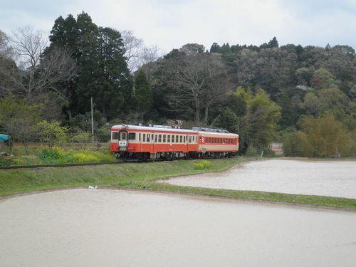 いすみ鉄道・キハ52 125+キハ28 2346(2013年4月6日・西畑駅)2