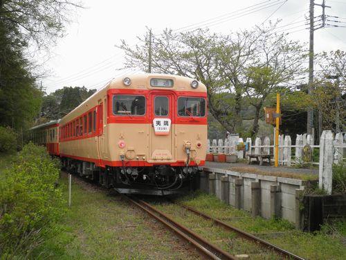 いすみ鉄道・キハ52 125+キハ28 2346(2013年4月6日・西畑駅)3
