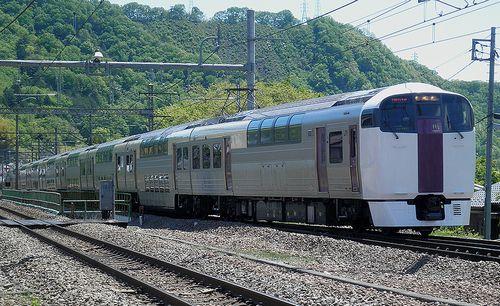 横コツ215系NL4編成(9591M「ホリデー快速ビューやまなし号」)(2013年5月3日・鳥沢駅)