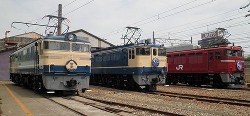 EF60 510・EF65 1115・EF81 133(JR大宮総車セ、2013年5月25日)
