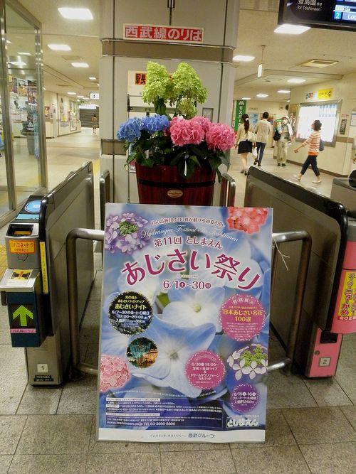 西武線練馬駅「としまえん・あじさいまつり」ディスプレイ(2013年6月16日)