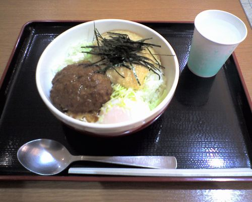 イオン浦和美園ショッピングセンター内「旅のレストラン日本食堂」の「ハチクマライス」(2009年1月27日)