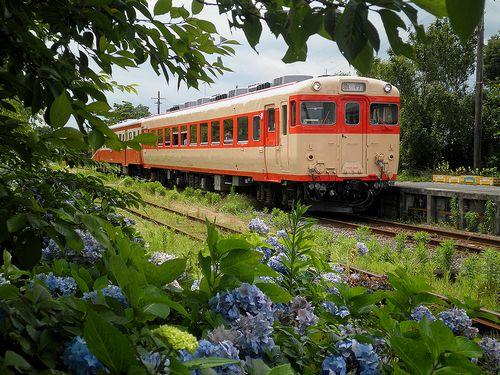 いすみ鉄道キハ28 2346+キハ52 125(2013年6月30日・国吉駅)1