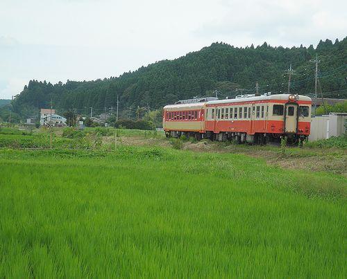 いすみ鉄道キハ52 125+キハ28 2346(2013年6月30日・新田野駅)