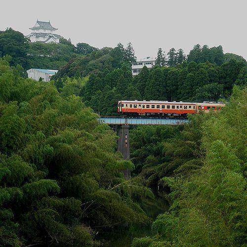 いすみ鉄道キハ52 125+キハ28 2346(2013年6月30日・大多喜~小谷松間)
