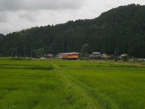 いすみ鉄道キハ28 2346+キハ52 125(2013年6月30日・西大原~上総東間)1
