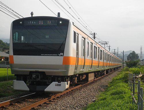 八トタE233系「青669」編成・快速「山梨富士号」(2013年7月21日・富士急行禾生~赤坂間)