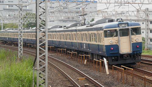 八トタ115系「M40」編成(2013年9月8日・平井駅)