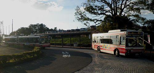 小田急シティバス・よみうりランド停留所(2013年9月29日)