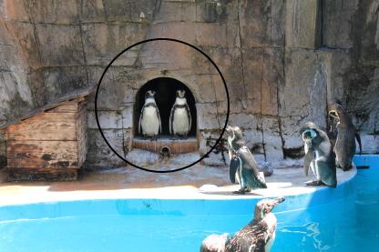 平川動物園.