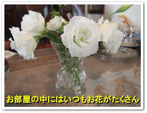 20130924_110.jpg