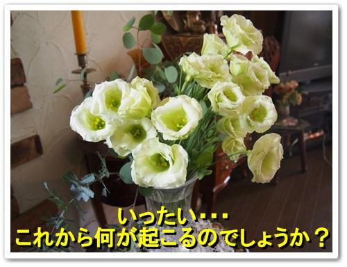 20130924_111.jpg