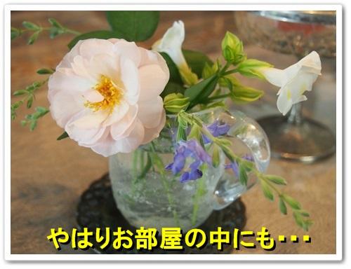 20130926_096.jpg