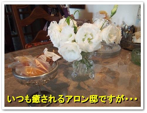 20130926_097.jpg
