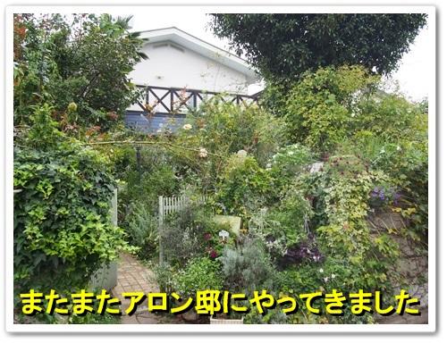 20130926_098.jpg
