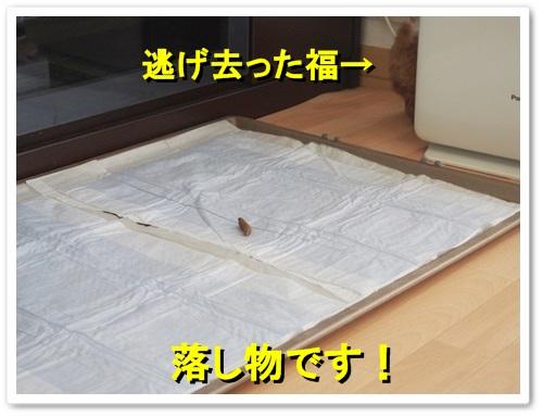 20130930_141.jpg