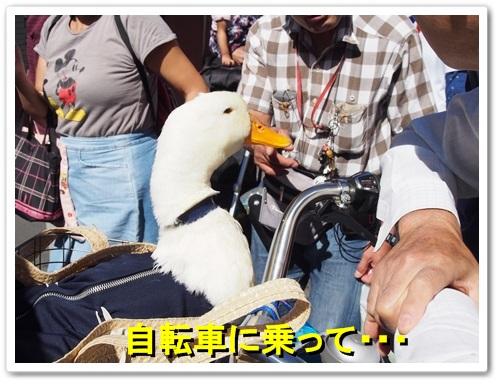 20131013_015.jpg