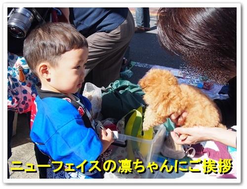 20131013_046.jpg