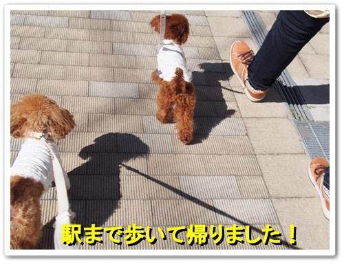 20131013_076.jpg