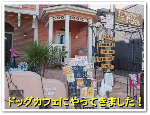 20131014_095.jpg