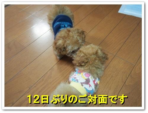 20131017_037.jpg