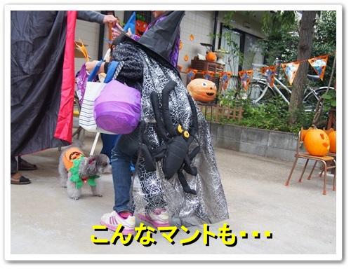 20131019_033.jpg
