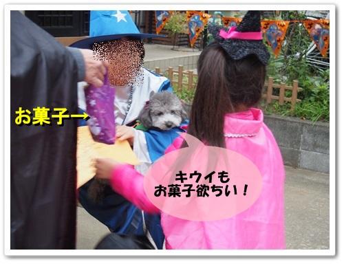 20131019_042.jpg