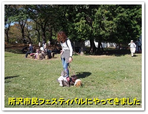 20131027_001.jpg