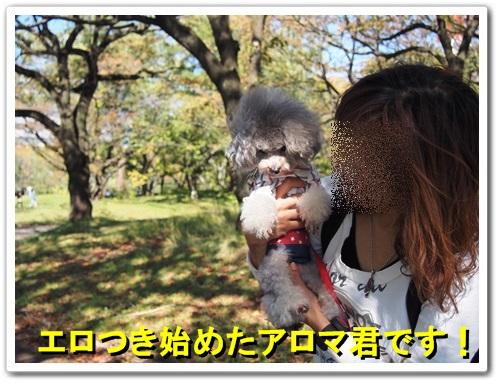 20131027_011.jpg