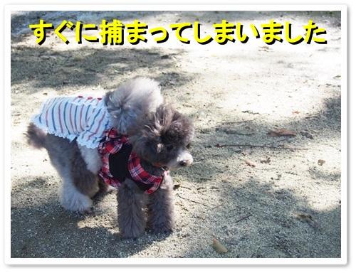 20131027_045.jpg