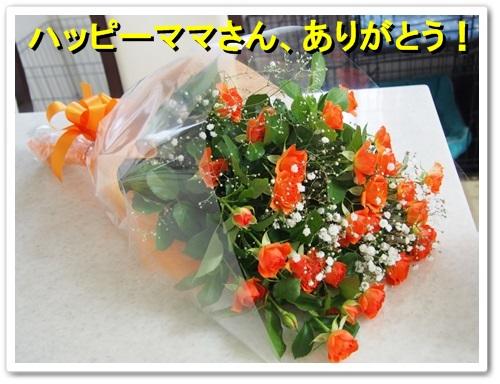 20131108_015.jpg