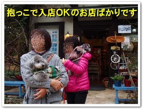 20131109_195.jpg