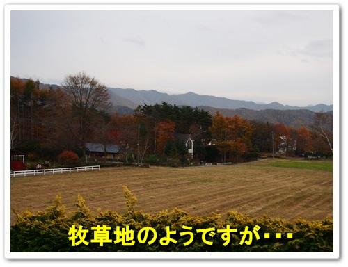 20131109_228.jpg